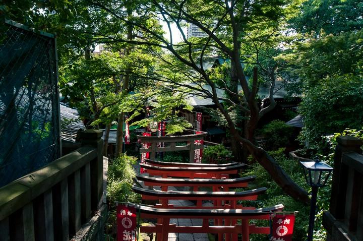 Ueno park Tori gates