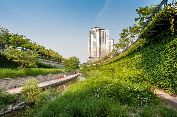 Highrise at Cheonggyecheon