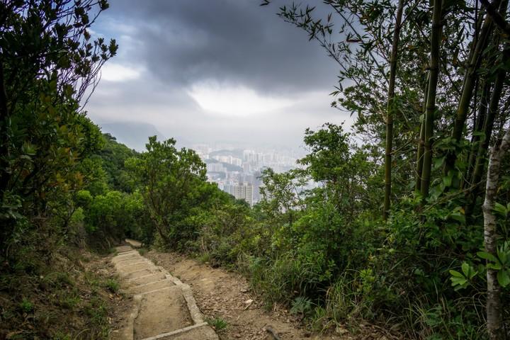 Lion Rock hike