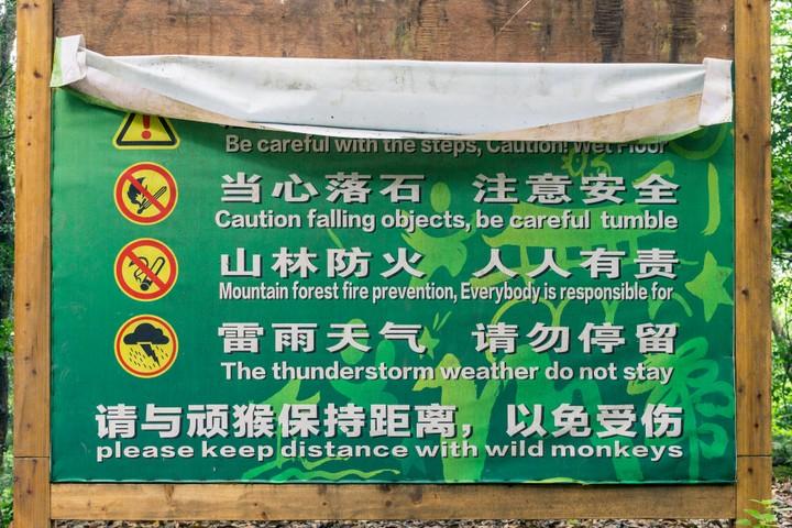 Keep distance with wild monkeys