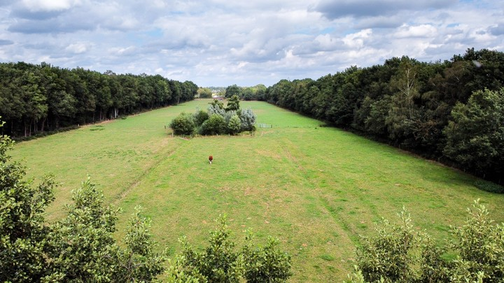 Drone shot of farmland