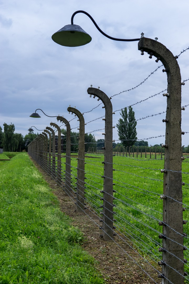 Even more barbed wire