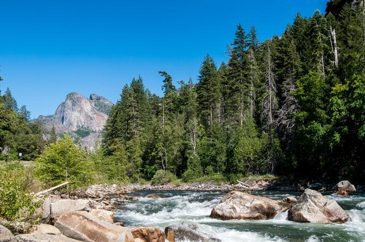 Stream in Yosemite National Park