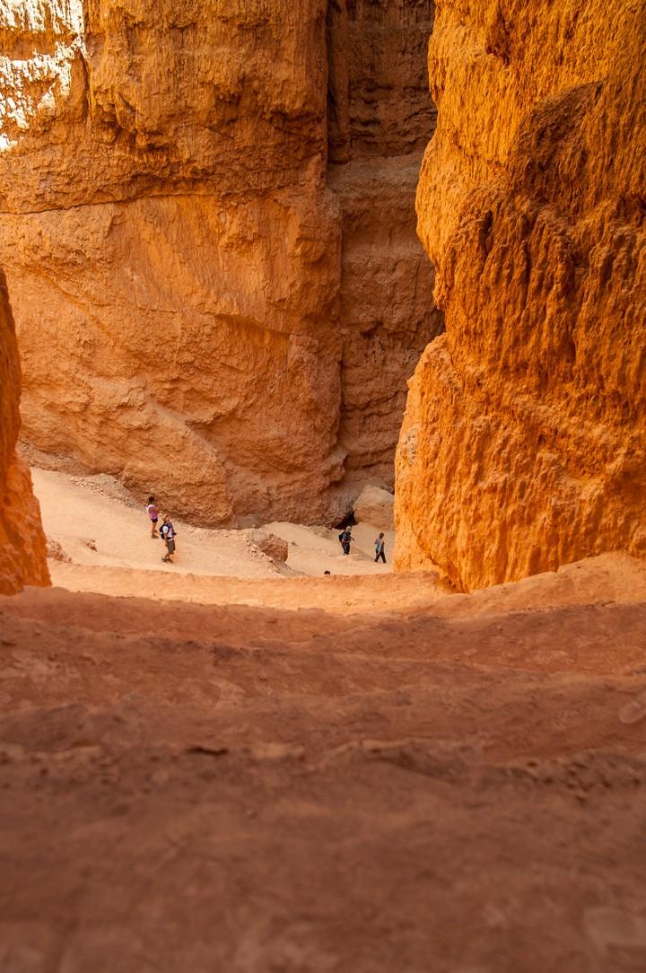 Bottom of Bryce Canyon Nat. Park
