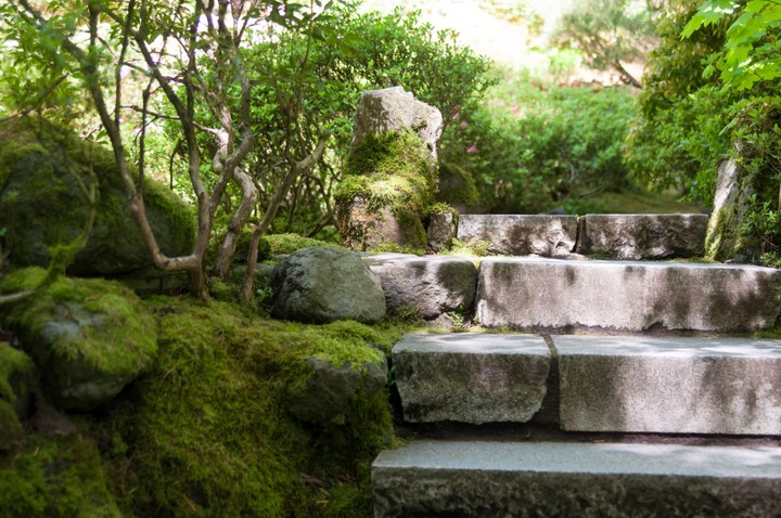 Stairs in Japanese Garden in Portland